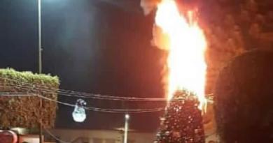 Árbol de Navidad gigante se incendia en Tancítaro