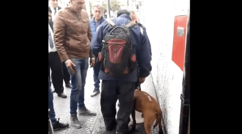 Maltrato animal en Quilmes