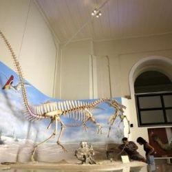 Los tesoros del Museo Nacional de Río de Janeiro que perdimos