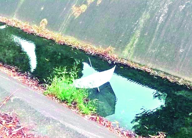 """No solo en los ríos dejan o tiran la basura, sino que también en el dren San Basilio es común encontrar """"residuos"""" que no debería estar ahí."""