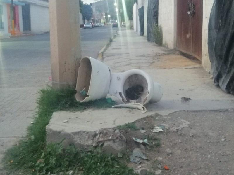 Ciudadanos piden se aplique el reglamento que sanciona a las personas que dejan su basura fuera del horario del paso del camión, porqiue genera foco de infección como un retrete.