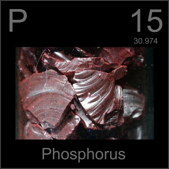 Phosphorus Violet Phosphorus