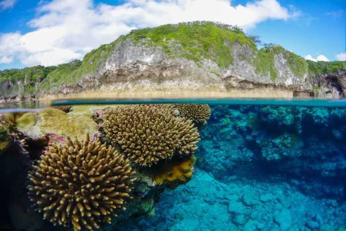 Niue: Ένα απομακρυσμένο νησί χάρμα οφθαλμών!