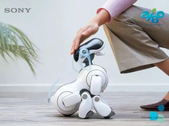 Aibo-robot-dog2-550x412