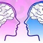 Cerebro masculino y femenino