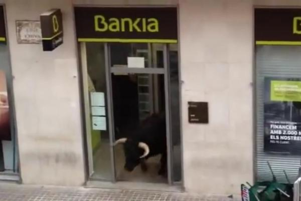 Hidden-charges-Bull-vanishes-into-bank-during-Spanish-festival