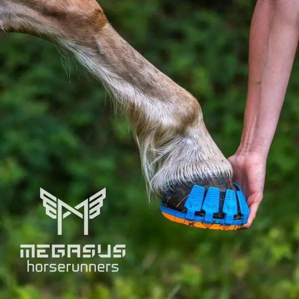 megasus-horserunners3-600x600