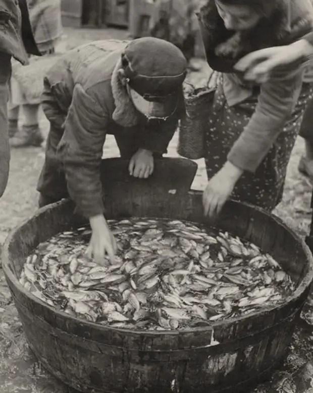 Buscando pescado para la comida kosher en el mercado. 1935-38