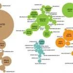 millonarios_mapa