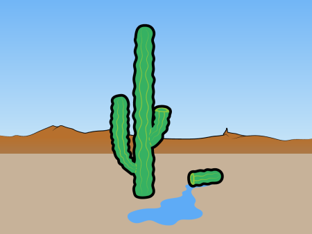 myth-the-fluid-in-a-cactus-can-save-you-from-dying-of-thirst