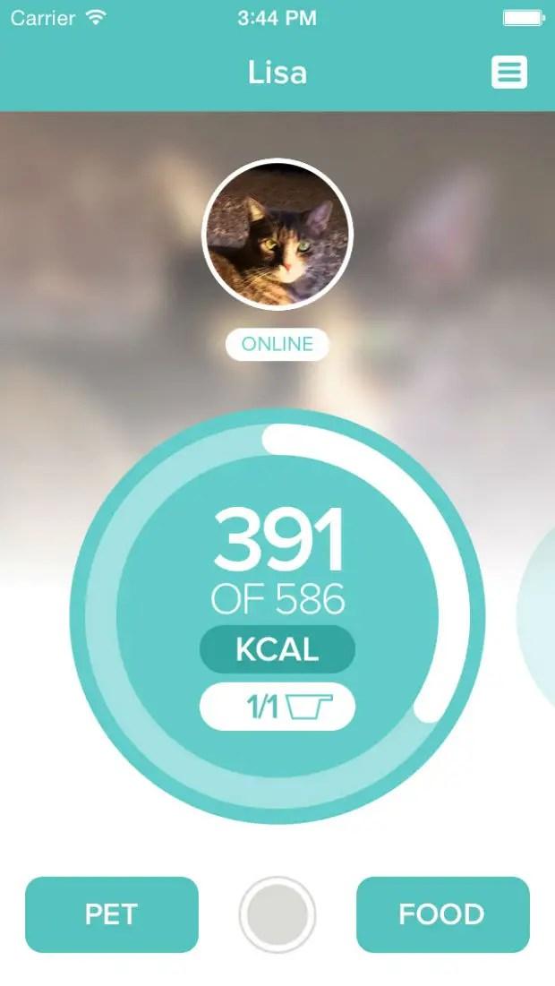 pn-app-dashboard