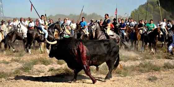 Image result for toro de la vega 2016 fecha