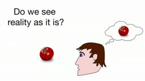 """""""Do we see reality as it is?"""" –Grafik eines Mannes, der auf eine Tomate schaut"""