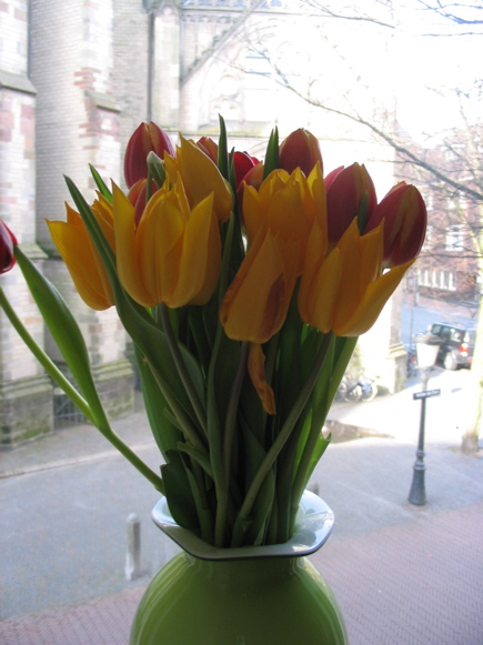 Easter flowers in Utrecht