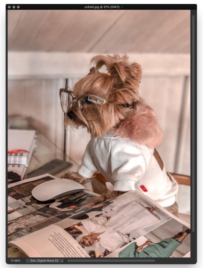 Coco descubriendo novedades de moda - Repaso semanal