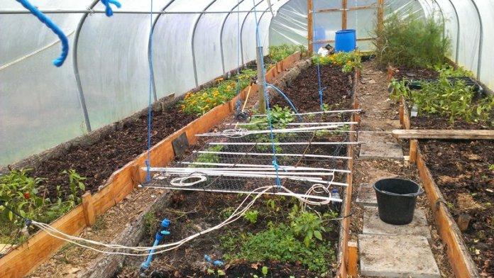 polytunnel acqua permacultura