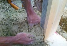 cob miscela argilla