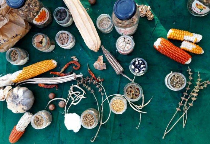 seminativi permacultura eva