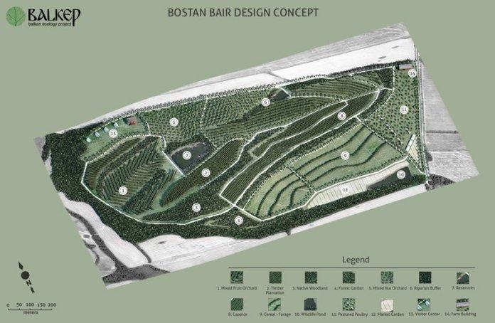 Bostan Bair Site desing - Log