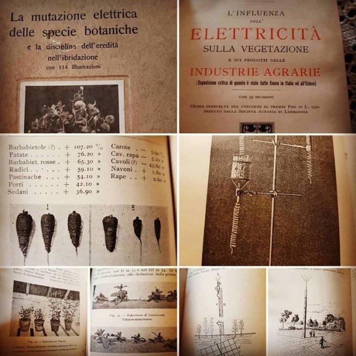 scritti elettrocoltura permacultura