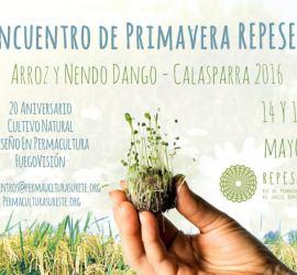 Encuentro de Primavera REPESEI - Arroz y Nendo Dango - Calasparra 2016