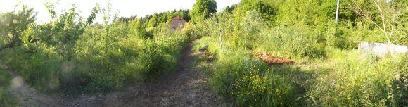 Bauernhof 029