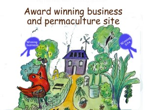 we walk the talk - award winning business and food forest