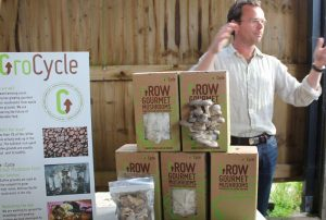 grocycle mushrooms grown on coffee waste Small Business