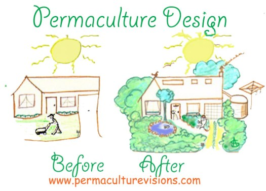 Permaculture_Design_before_after