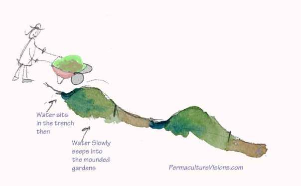 mound-garden-swale-water---cross-sectional-view