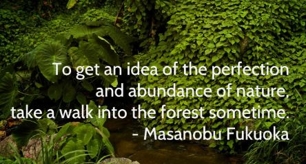 Quote van Fukuoka