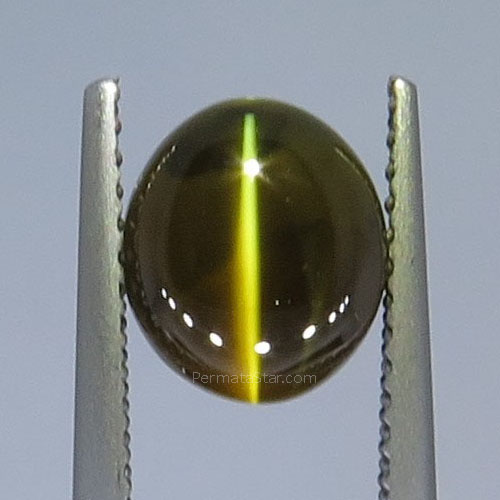 Jual Chrysoberyl Cat's Eye