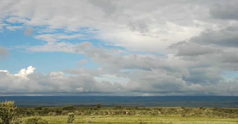 Afryka jest miejscem magicznym. (Fot. Edyta Kijewska)