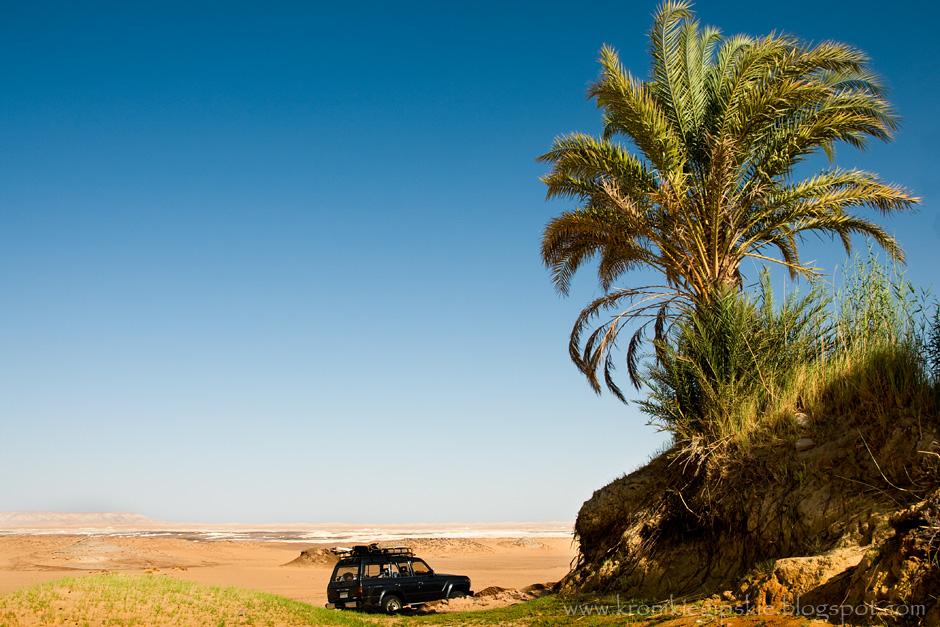 13. EGIPT, Sahara. Przewodnicy karawan potrafili nawigować na podstawie słońca i gwiazd oraz ułożenia skał i rodzaju piasku, po którym szli, dzięki czemu dokładnie wiedzieli ile dni marszu dzieli ich od kolejnych źródeł życiodajnej wody. (Fot. Anna Krukowska)