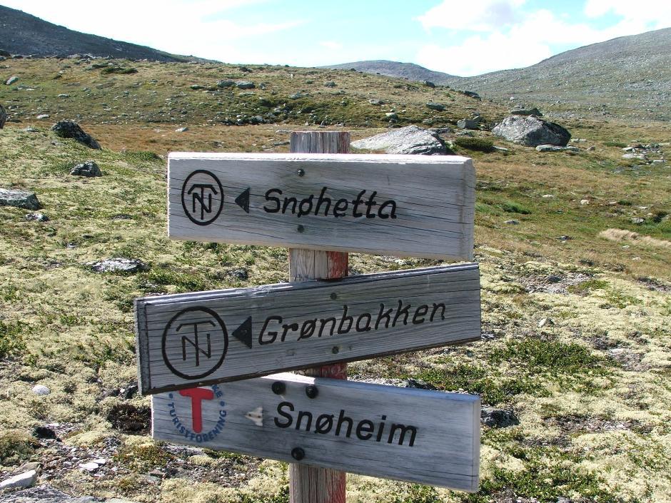 """5. Szlak prowadzący na szczyt oznaczony jest zazwyczaj literą """"T"""" malowaną na skałach i innych widocznych miejscach czerwoną farbą. W ważniejszych punktach stoją także drogowskazy."""