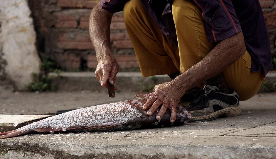KUBA, Trynidad. … rybę z porannego połowu. (Fot. Agnieszka i Mateusz Waligóra)