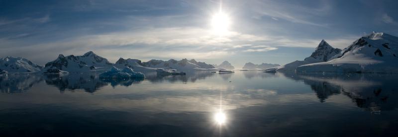 Antarktyda to nie tylko kupa lodu - zaskakujące jak dużo życia jest na tym mroźnym kontynencie, jaka różnorodność, jaka walka. (Fot. Kuba Fedorowicz)