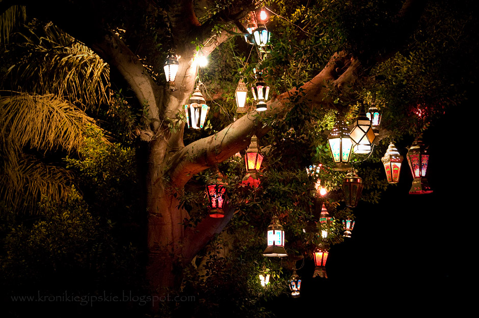 15. EGIPT, Kair. Już niedługo takie fanoosowe drzewa przez miesiąc rozświetlać będą egipskie ciemności. Ramadan kareem! Wesołego Ramadanu! (Fot. Anna Krukowska)