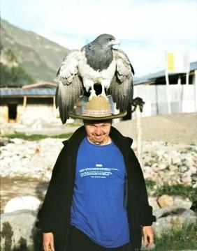 Pan z ptakiem na głowie