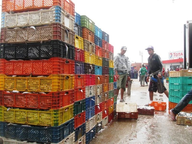 Sprzedaż ryb w Essaouirze