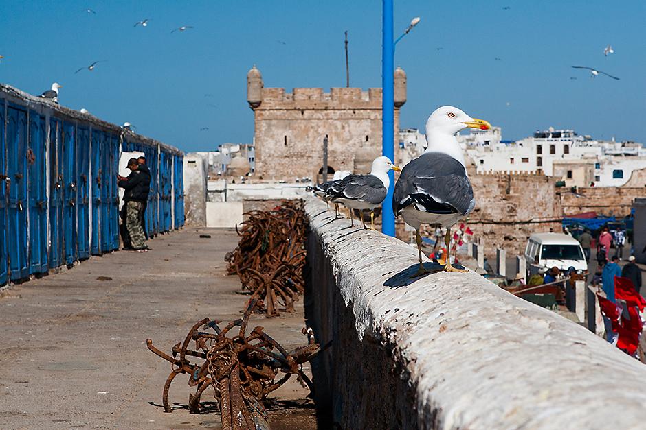 Maroko pełne jest malowniczych miejsc
