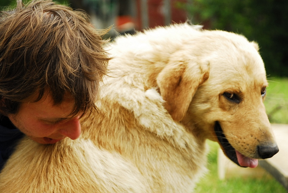 Pasikonik i pies w Bieszczadach