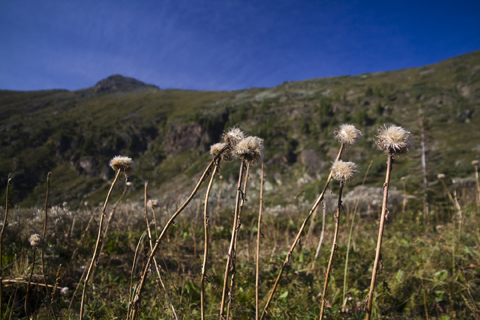 Zdjęcia z podróży przez syberyjskie góry
