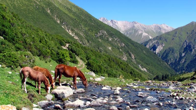 Bajeczny krajobraz Kirgistanu