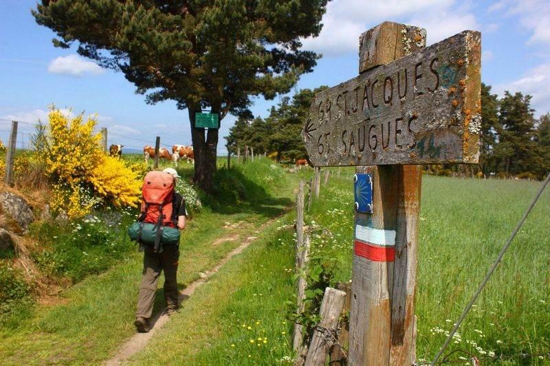 Droga świętego Jakuba - w kierunku Santiago