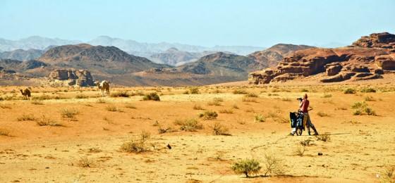 Jordania - rowerem przez pustynię
