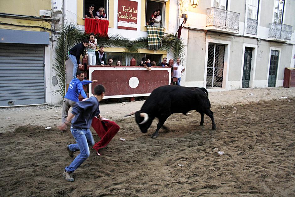 Portugalscy torreadorzy - foto