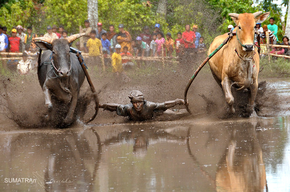 Wyścig w błocie - zdjęcia z Sumatry
