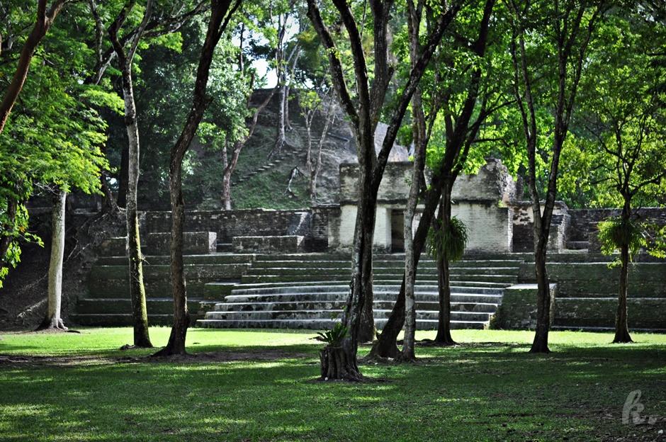 Ruiny cywilizacji Majów w Belize