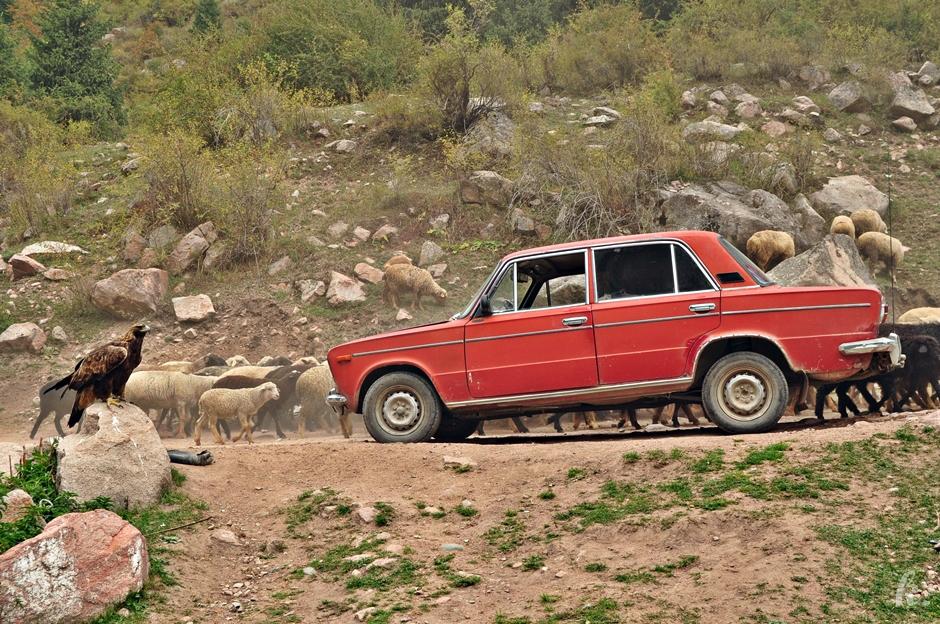 Ładą przezx Kirgistan - foto